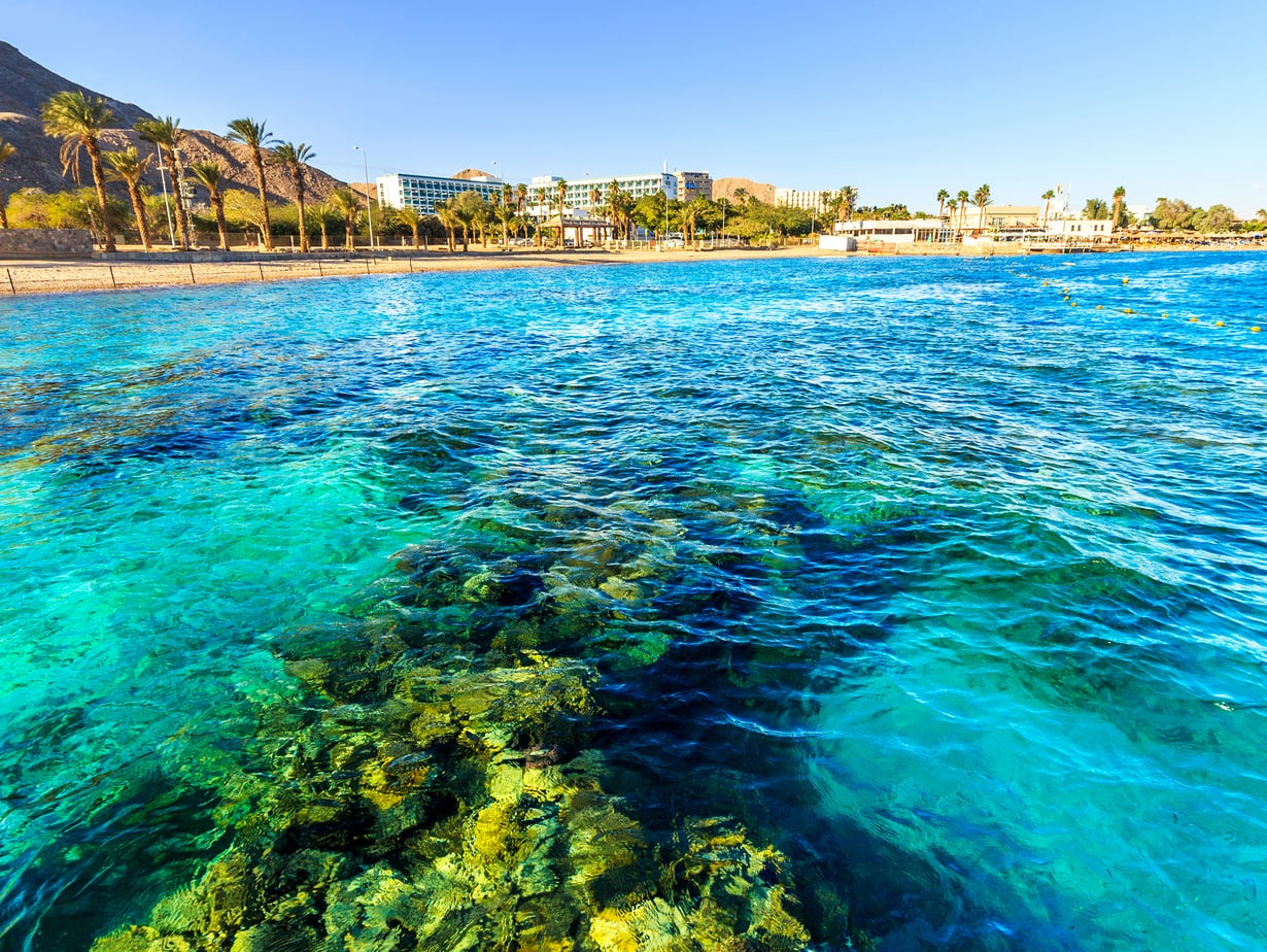 Bongaa mahtava mureena! Eilat on snorklaajan paratiisi. Kuva: Shutterstock