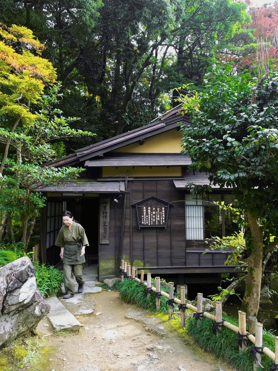 Toiset lähtevät ruskaretkelle Lappiin, minä bongailen ruskan väreissä olevia japanilaisia puutarhoja.