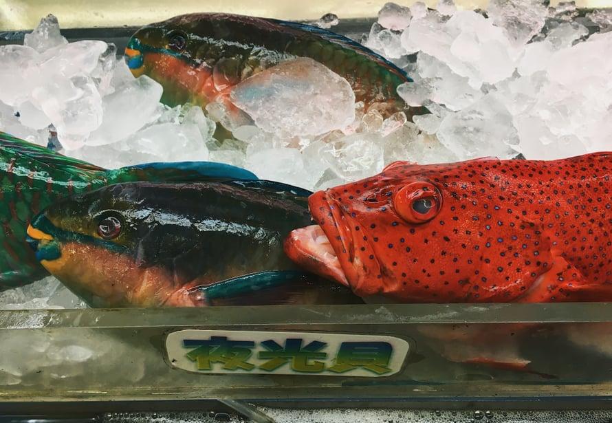Kauppahallin värikkäitä kaloja oli kiva ihastella, vaikka tällä kertaa emme tehneetkään kalaruokaa.