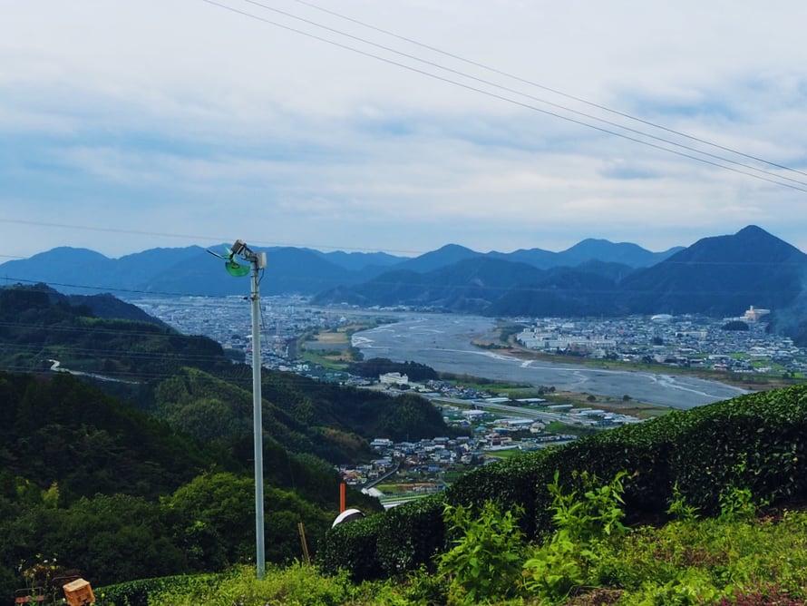 Shizuoka on prefektuuri keskellä Japania ja se tuottaa noin 40 prosenttia kaikesta japanilaisteestä. Paikalliset sanovat, että se on Japanin suurin teealue.