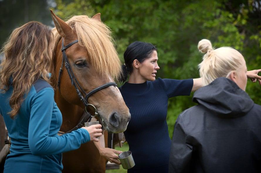 Monella Farmi Suomen osallistujalla on jonkinlaista kokemusta maaseutuelämästä. Esimerkiksi Riina-Maija Palander (kuvassa keskellä) on tottunut hoitamaan hevosia.
