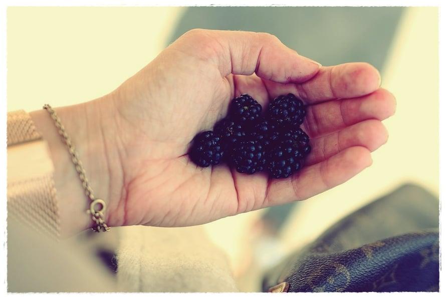BlackBerry dating hakemus