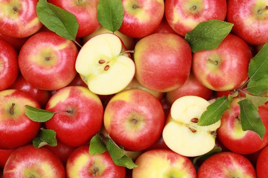Omena on ihanaa ja terveellistä purtavaa, mutta mieluummin ilman siemeniä.