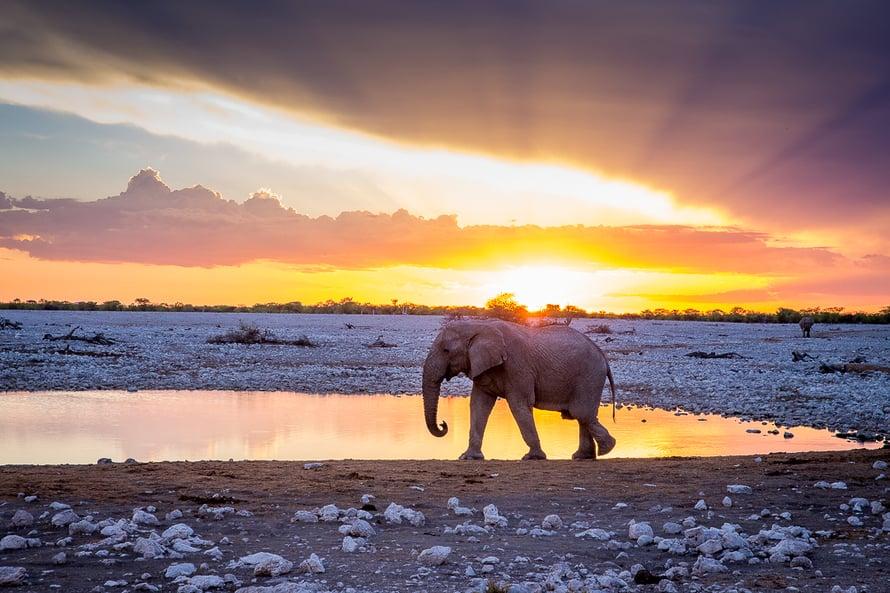 Maailmanympärimatkan alkupuoliskolla Anna-Katri teki roadtripin halki Afrikan. Sieltä suosikiksi nousi Namibia.