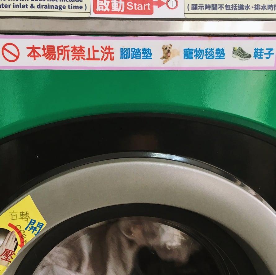 En osaa kiinaa: tarkoittaako kieltomerkki sitä, että koiria ja kenkiä ei saa pestä koneessa?