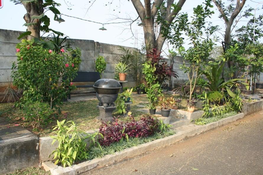 Indonesiassa kaikki kasvaa niin nopeasti ja satokausia on useita.
