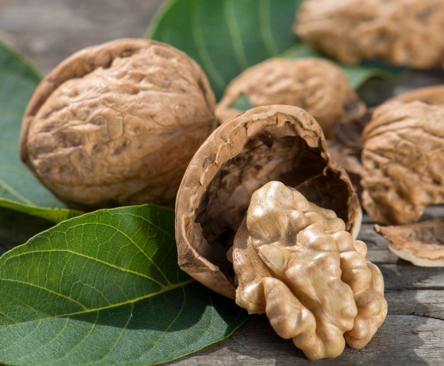 """Kourallinen saksanpähkinöitä päivässä tekee hyvää muistille. Kuva: <span class=""""photographer"""">Shutterstock</span>"""