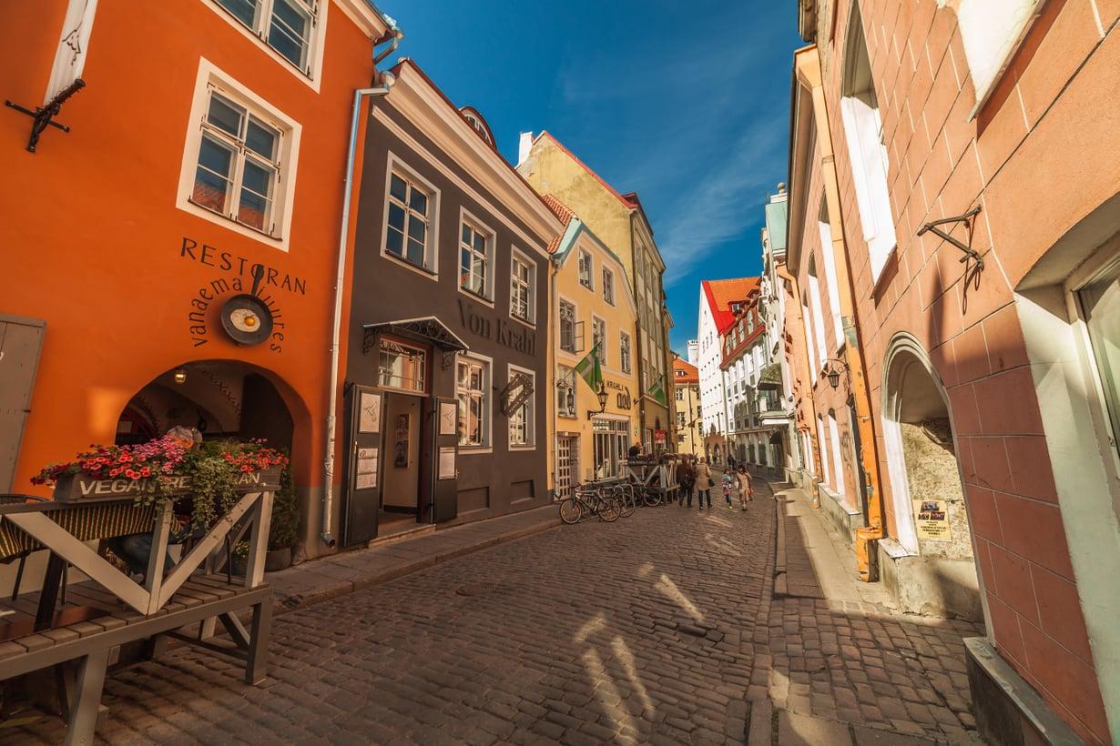 Tallinnan ruokaskene kukoistaa, ja siellä voi syödä huippuruokaa edullisesti. Kuva: Shutterstock