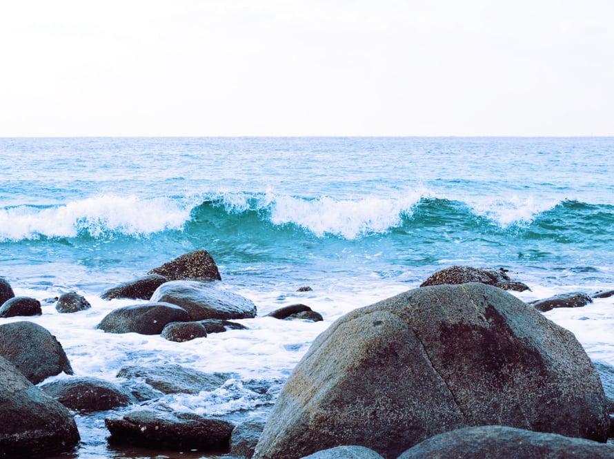 Kivien välistä saattaa löytyä aarteita, kuten simpukankuoria.