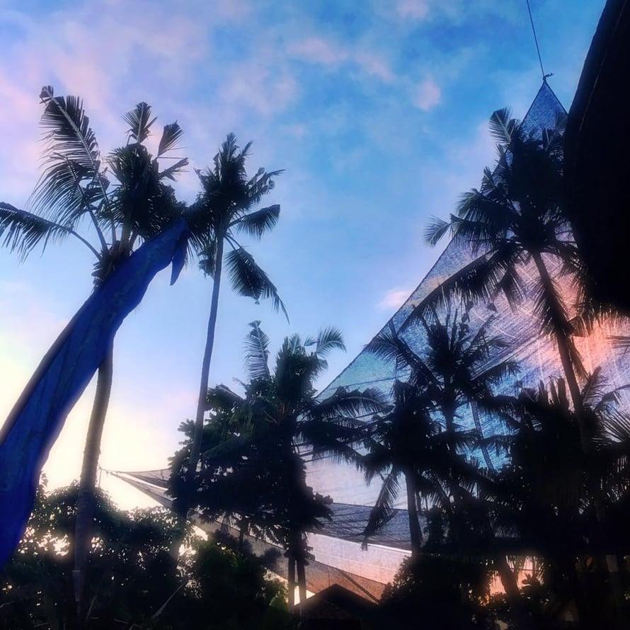 Yoga Barnin palmut Ubudissa, Balilla.