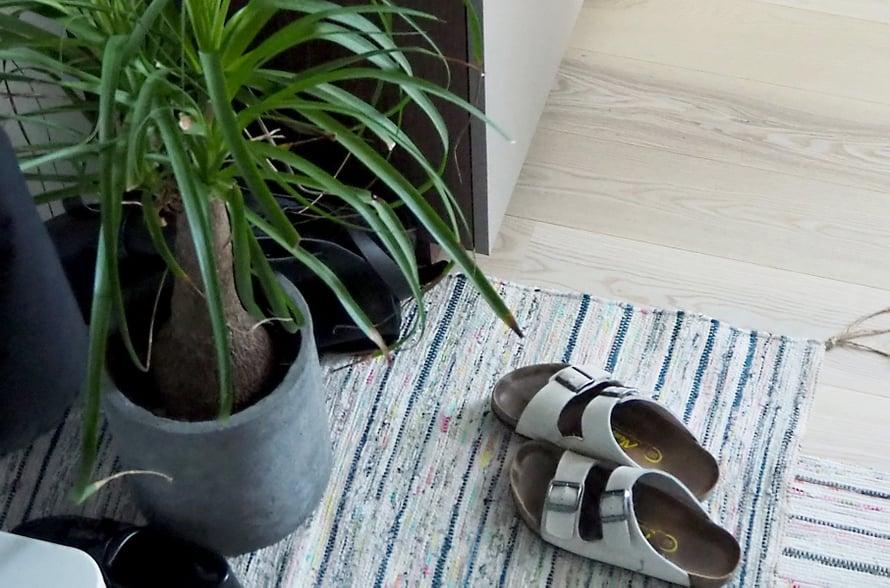 Joonas toi kasvien lisäksi myös mattoja hotellihuoneeseensa.