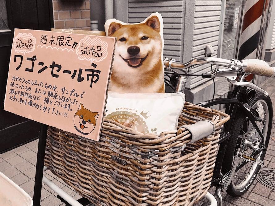 Maru kulkee usein pyörän korissa pitkin Tokiota.Tässä Marua esittää tyyny.