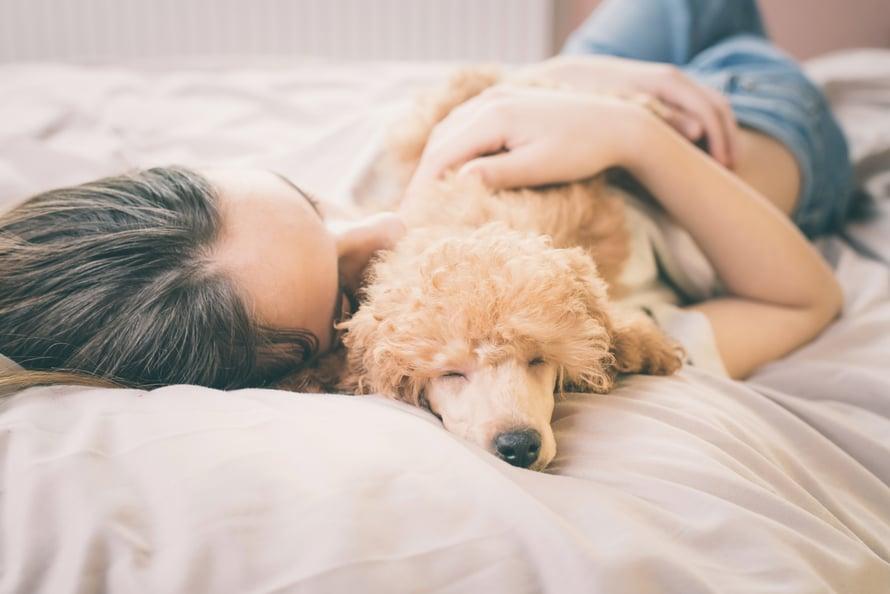 """Tutkimusten mukaan lemmikin paijaaminen vähentää stressiä, laskee verenpainetta ja nostaa mielialaa. Mutta kyllä koirakin siitä hyötyy! Kuva: <span class=""""photographer"""">Shutterstock</span>"""