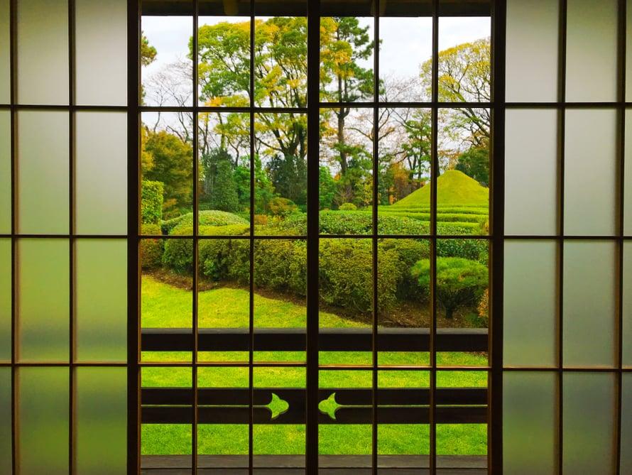 Tästä ikkunasta voisi tuijottaa ikuisuuden.