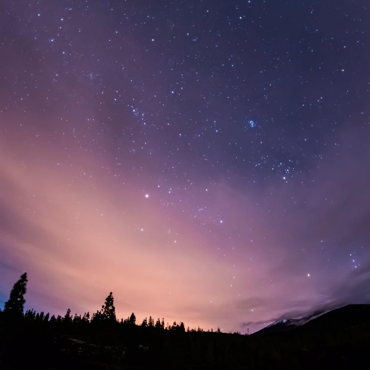 Mitä tähdet kertovat? Kuva: Shutterstock
