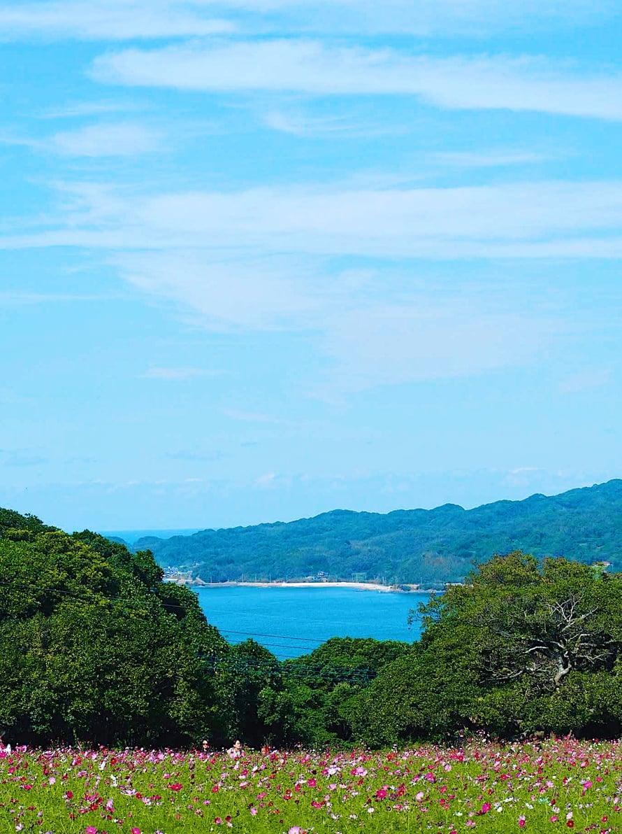 Shikanoshiman saareke näkyy vastarannalla.