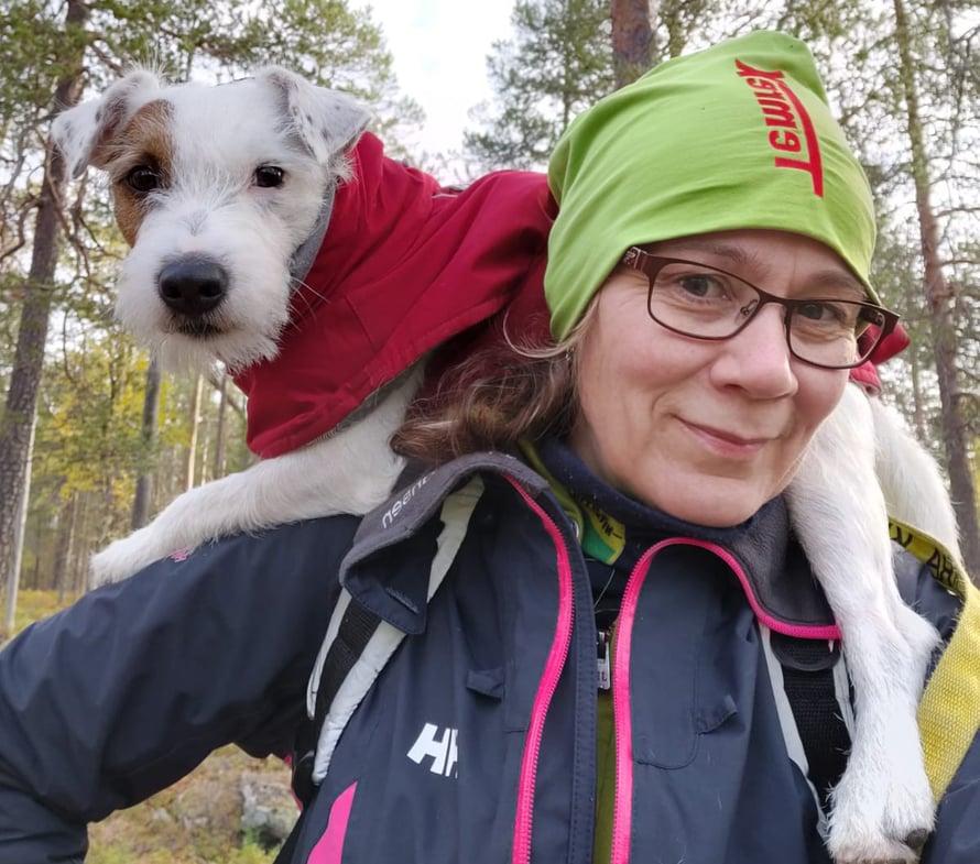 Harvinainen näky: Aapo lepäilee omistajansa Tanja Sarajärven selässä.
