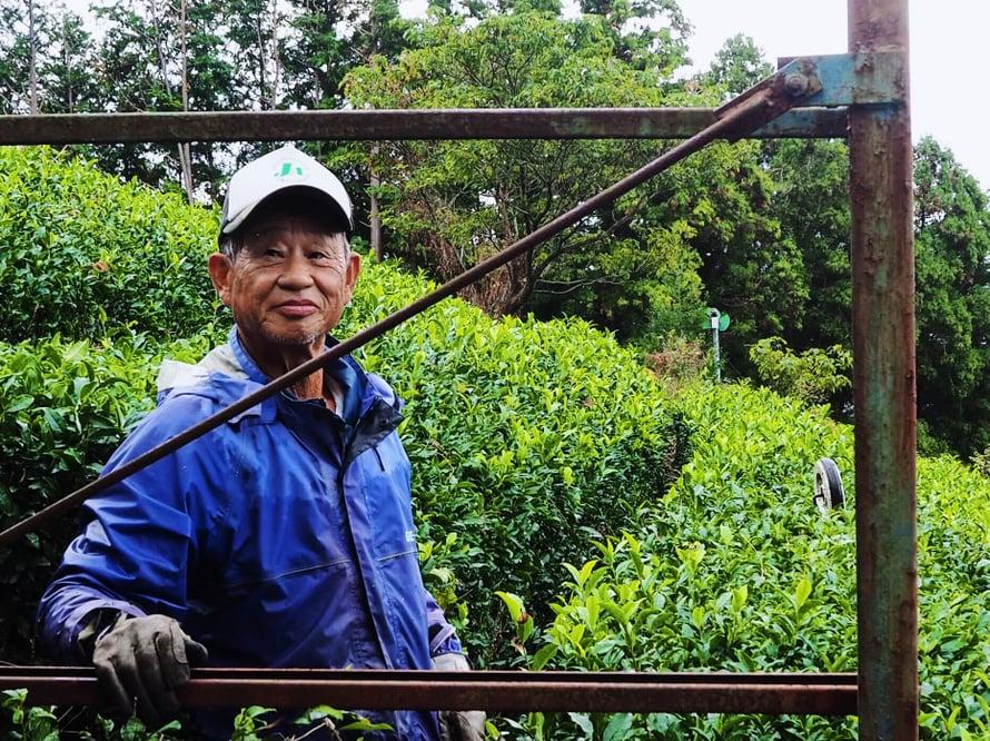 71-vuotias teefarmari jaksaa trimmata vuorilla vielä pensaita.