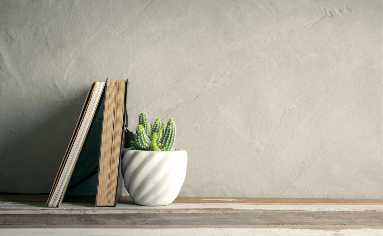 Piikikäs kaktus ei kuulemma toivota tervetulleeksi kotiin. Sama vaikutus on masentavasti nimetyillä kirjoilla. Kuva: Shutterstock