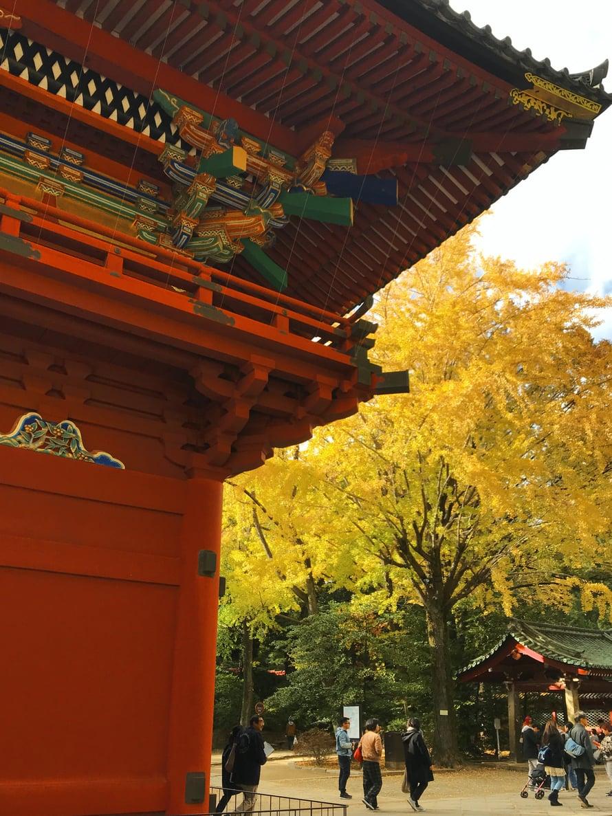 Temppeli- ja ruskaloistoa Nezun kaupunginosassa. Siellä, jossa sijaitsee myös Marun kauppa.