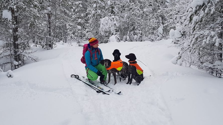 Katri ulkoilee paljon kolmen koiransa kanssa, mihin vuodenaikaan tahansa.