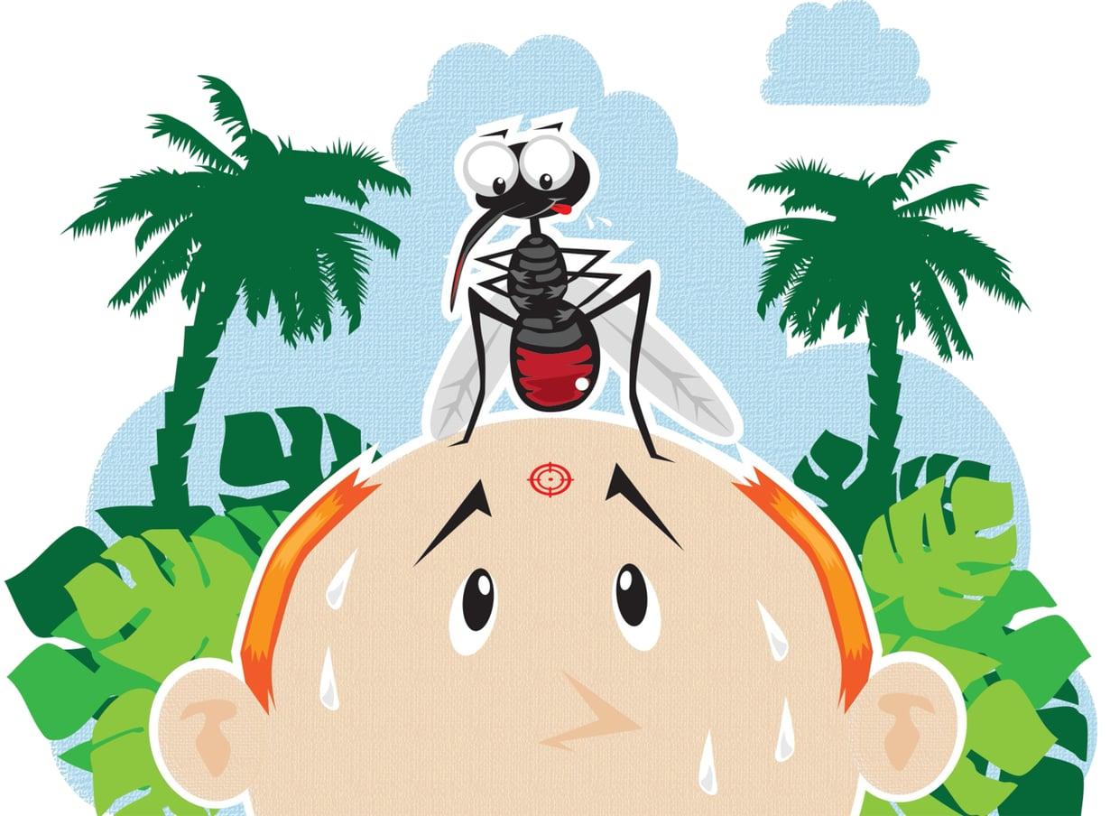 Malarialoinen elää ihmisen veressä ja tarttuu ihmisestä toiseen hyttysten välityksellä, verensiirroissa ja äidistä lapseen raskauden aikana. Kuvitus: Petri Rotsten