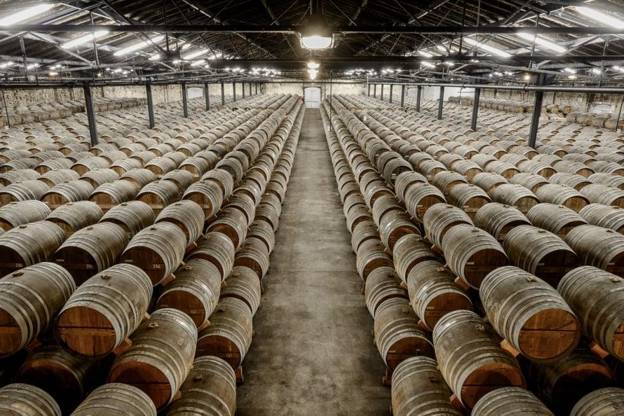 Tammitynnyreihin käytettävän tammen pitää lain mukaan olla vähintään 50-vuotiasta. Konjakki on nimetty Cognacin kaupungin mukaan, ja nimeä voivat käyttää ainoastaan Cognacin tuottajat.