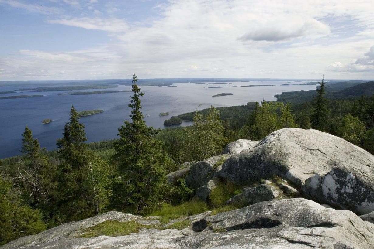 Siintääkö sisimmässäsi Kolin kansallismaisema? Kuva: Sanoma-arkisto / Tea Karvinen