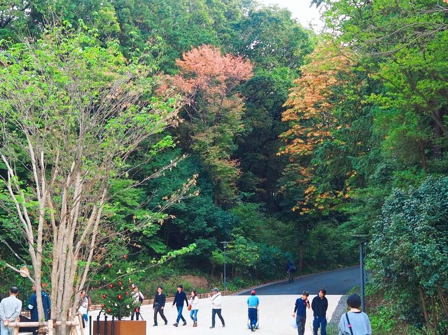 Ruskan värit alkavat näkyä Saitamassa.