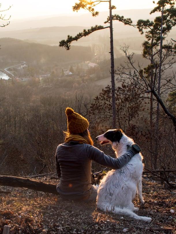 Sinkku ja lapseton koiranomistajanainen saattaa elää muita pidempään, jos tutkimuksia on uskominen.