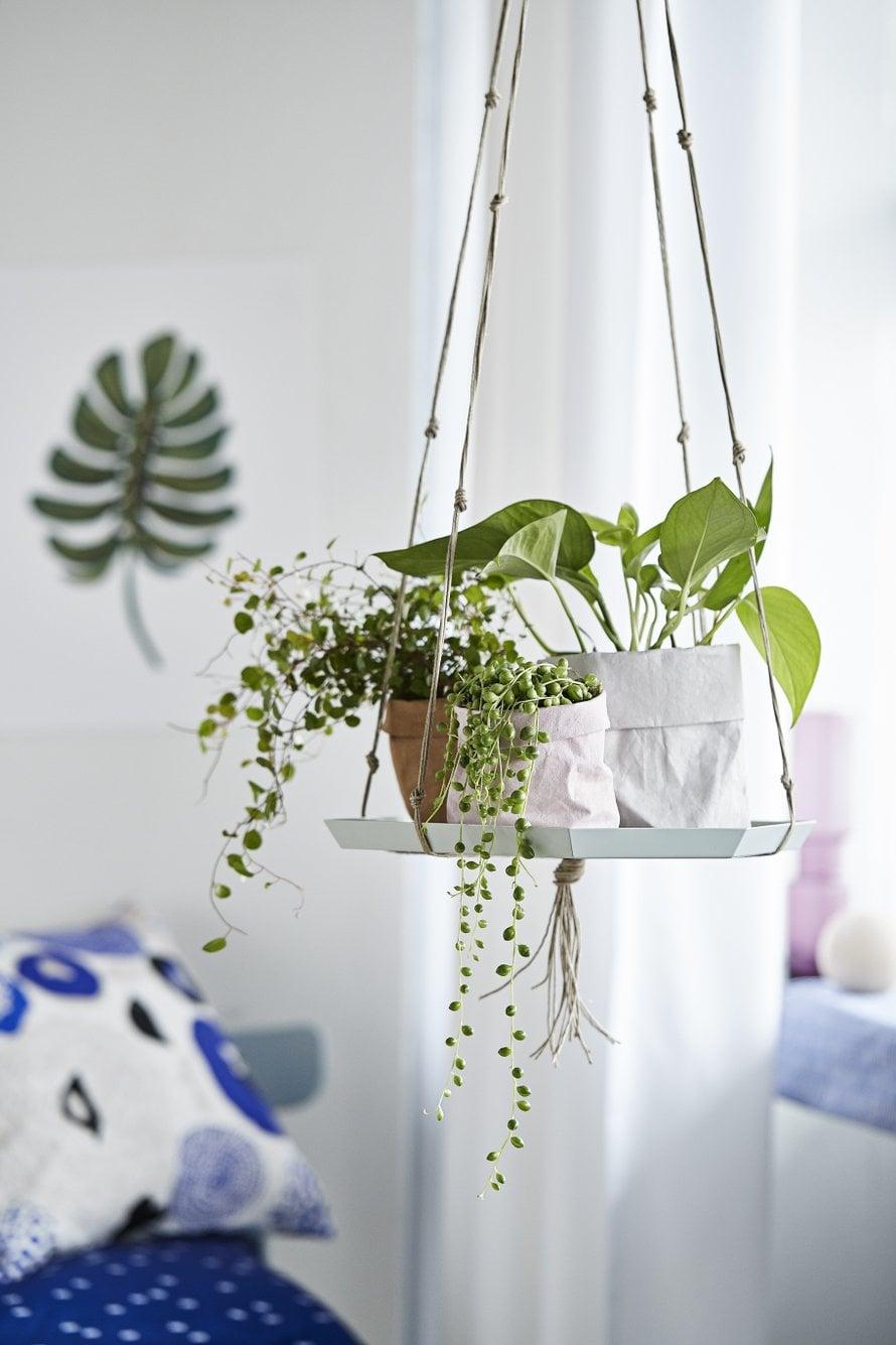 Kaunein asetelma syntyy kasveista, joilla on erimuotoiset, -pituiset ja -väriset lehdet. Keittiössä toimivat yrtit.