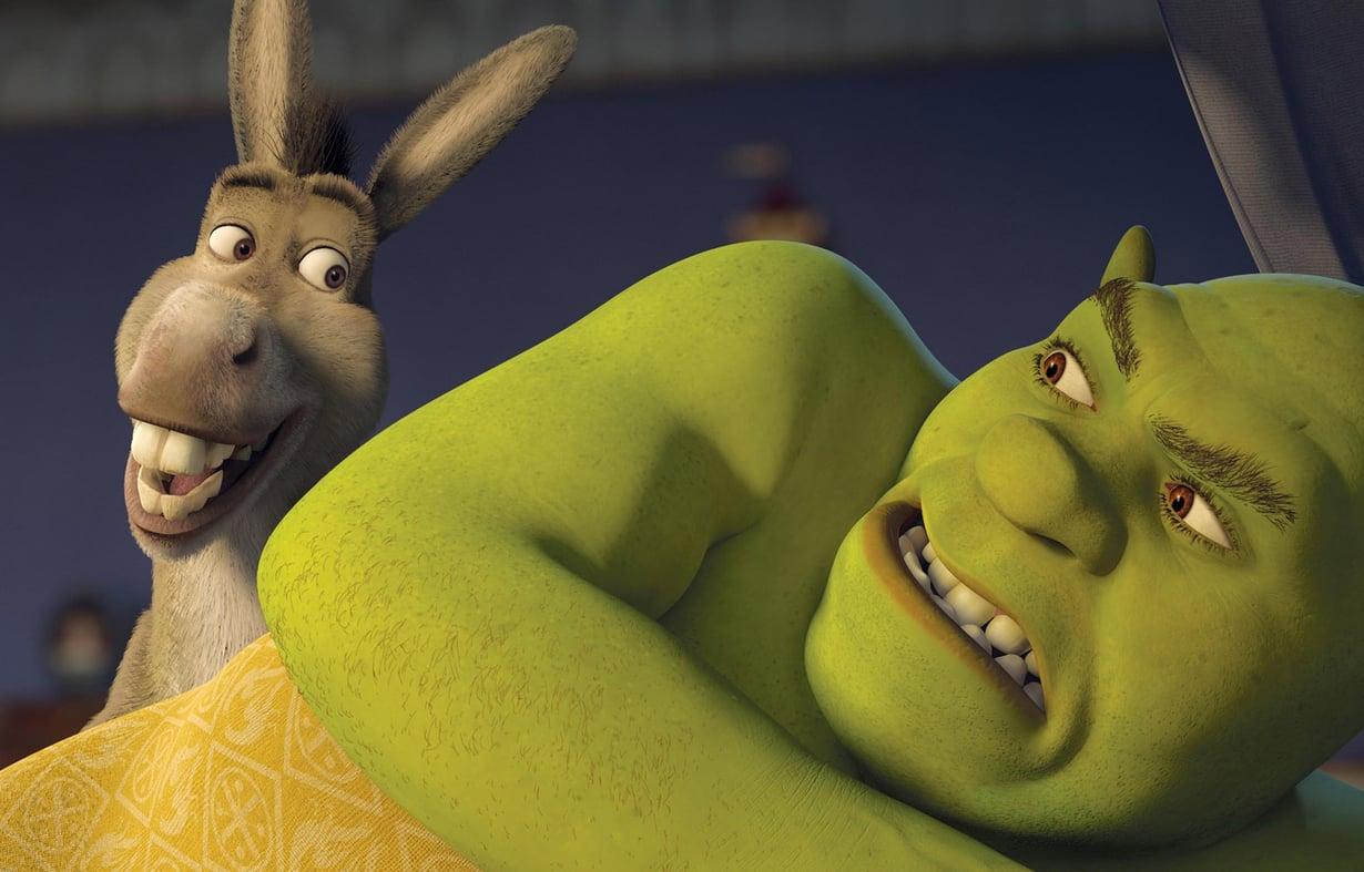 Janne Kontkasen työnjälki nähtiin muun muassa Shrek 3 -elokuvassa. Shrekin vihreä nahka ei näyttäisi yhtä eläväiseltä ilman Kontkasta. Kuva MVPhotos