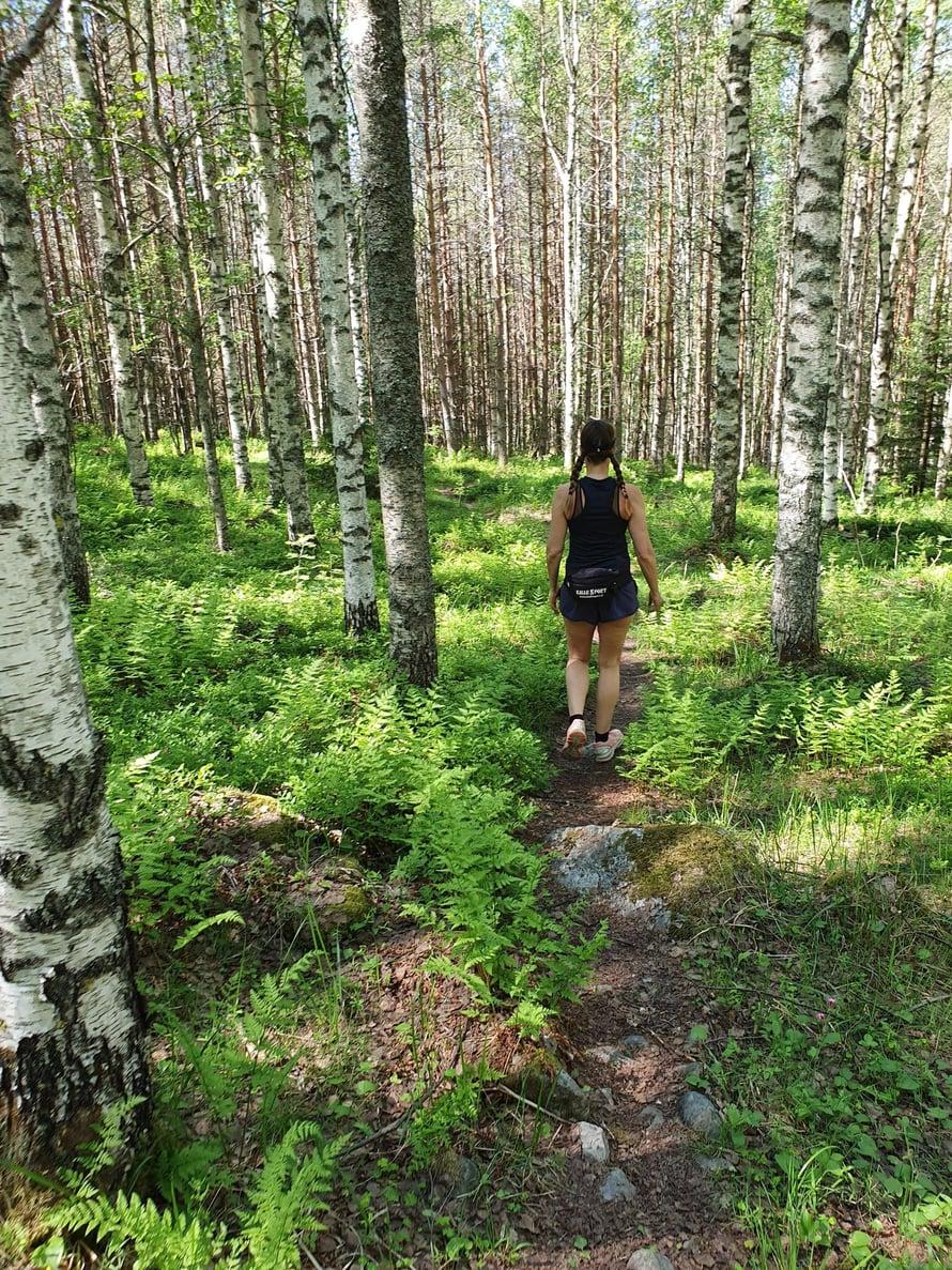 Vaellusreiteillä vaihtelevat karun kauniit havumetsät sekä satumaisen rehevät lehdot.